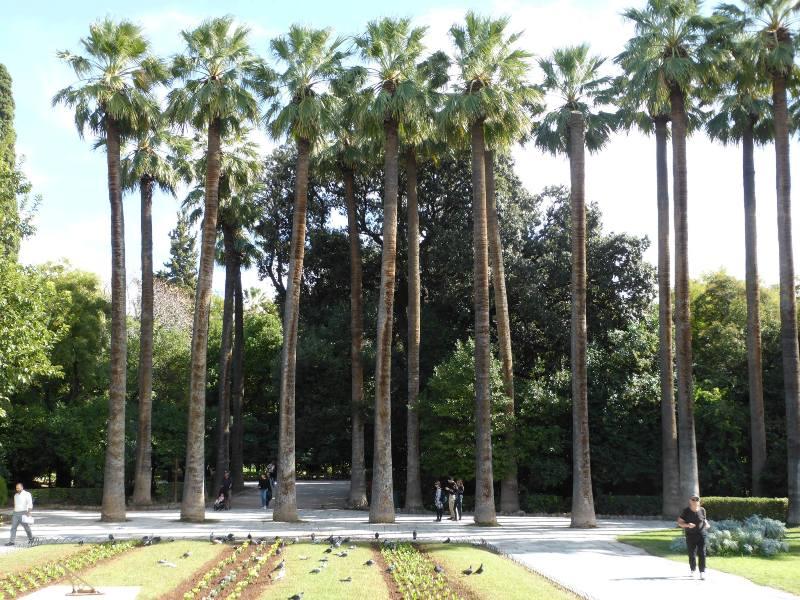 Entrada do Jardim Nacional