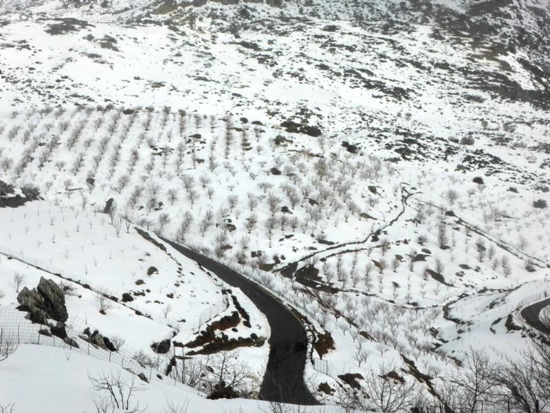 P1090878 - Livadi Creta